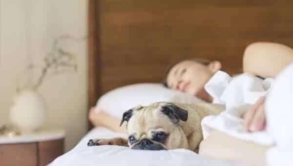 melatonina per dormire pro e contro